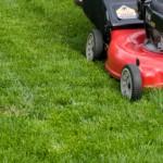 градинарски услуги-цени_1