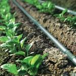 селскостопански напоителни системи_4