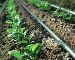селскостопански напоителни системи