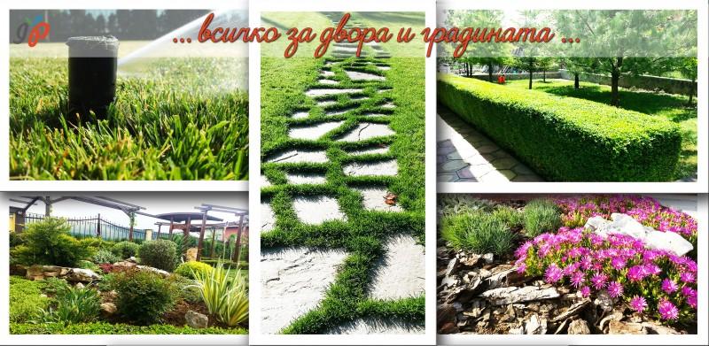 всичко за двор и градина в софия на страхотни цени