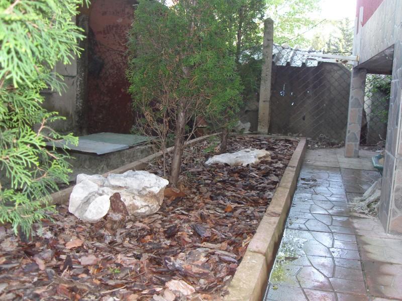 Мулчиране на туи и декорация с варовикови камъни