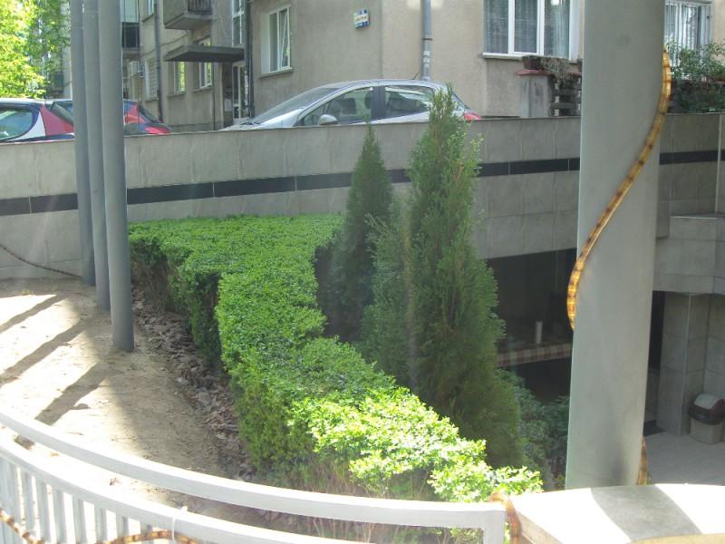 Озеленяване на агенция Фокус в гр. София