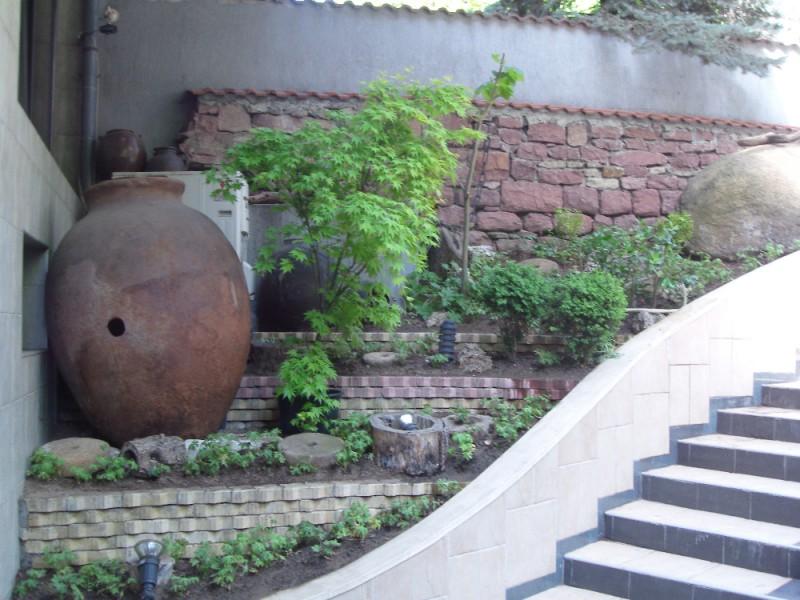 Озеленяване на офиси на агенция Фокус в гр. София