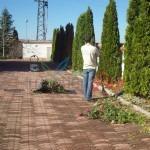 градинарски услуги на двор в софия