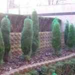 Зазимяване на декоративна растителност