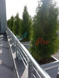поддръжка на зелени площи за офис