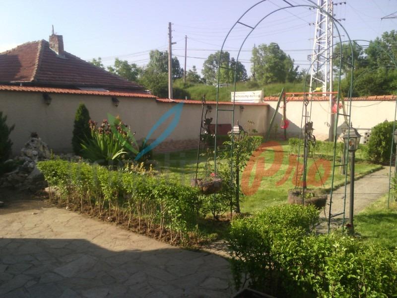 отделяне на пространства в двор чрез жив плет