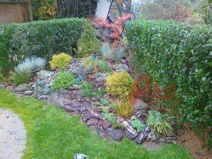 Озеленяване на двор и поливна система в кв. Бояна