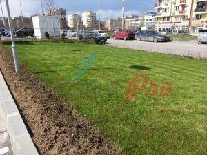 Озеленяване на KFC Drive thru в кв. Люлин