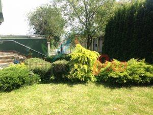 Поливна система и реставрация на трева
