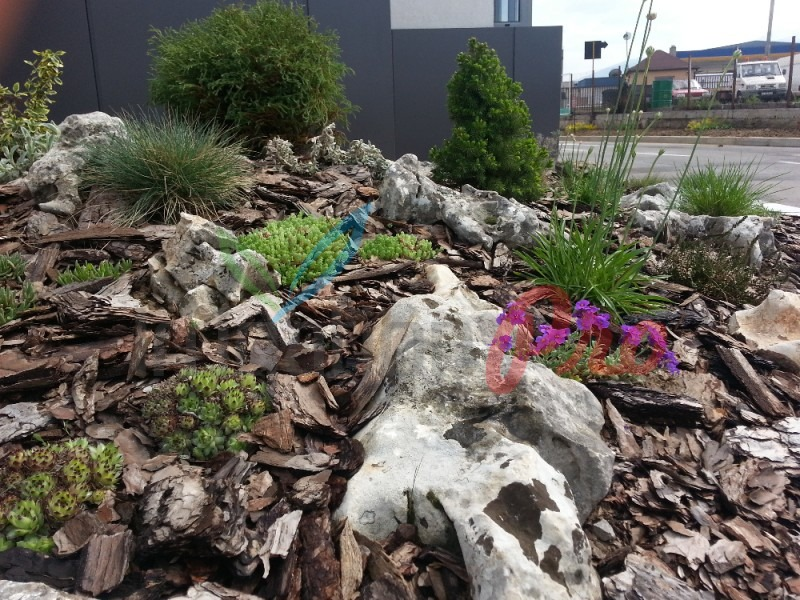 засаждане на цветя и храсти
