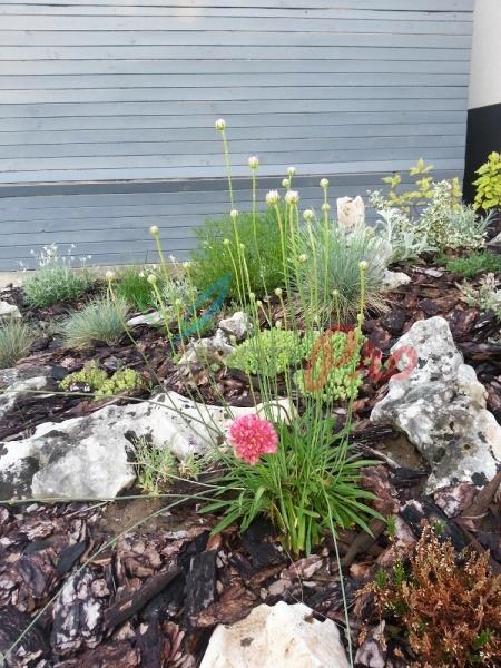 засаждане на храсти и цветя