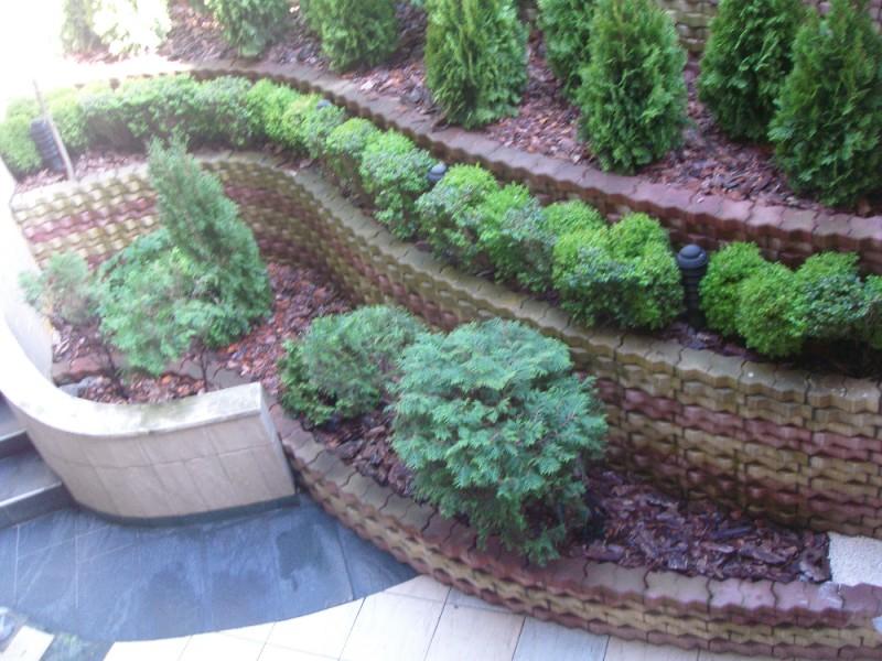 Засаждане на декоративна растителност и градинарски услуги