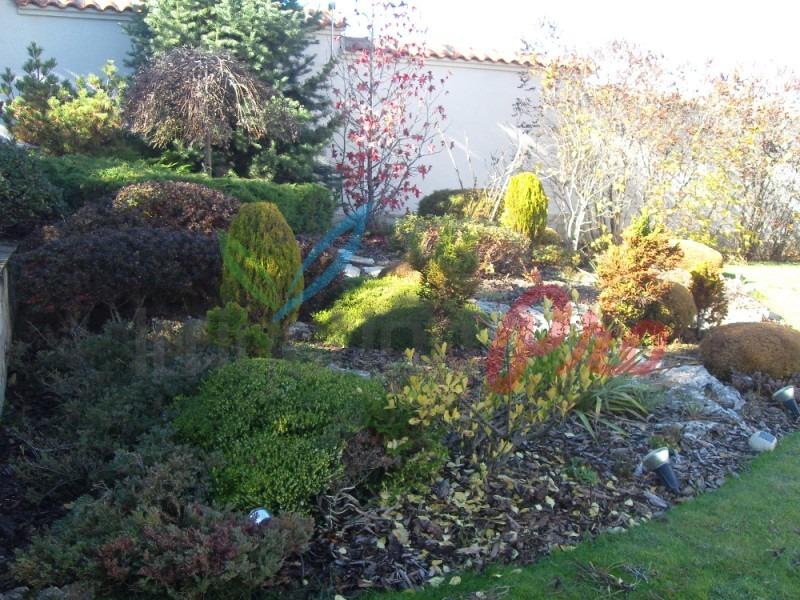 красив двор в софия