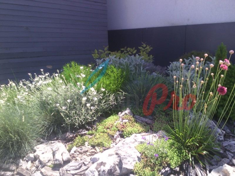 озеленяване на страхотни цени