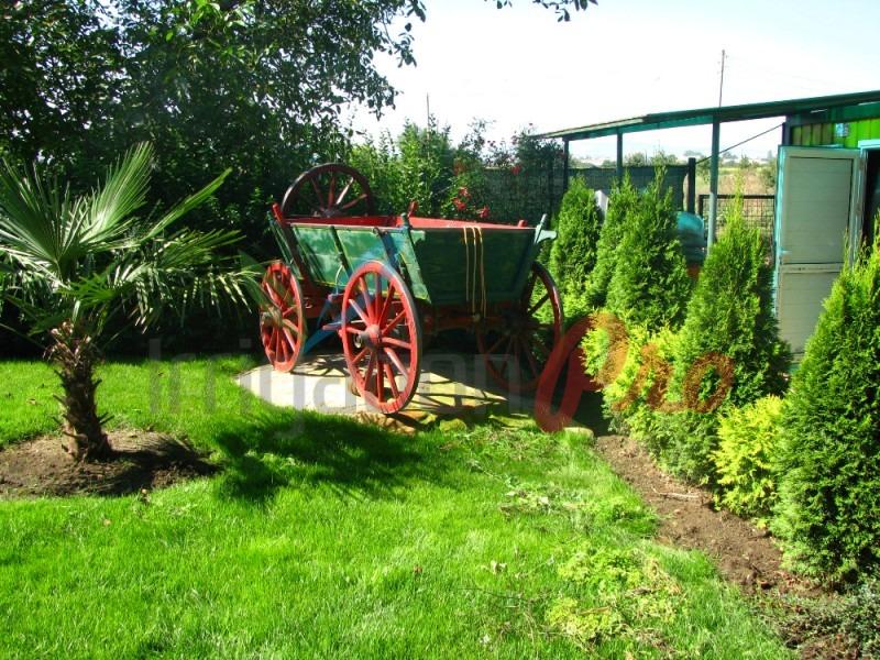 озеленяване на страхотни цени в софия